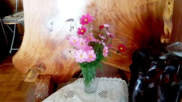 2016年10月地域サロン花のつどい