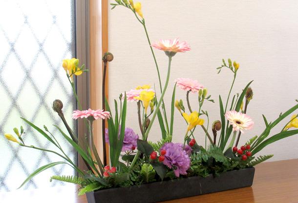 花のつどい 花の写真